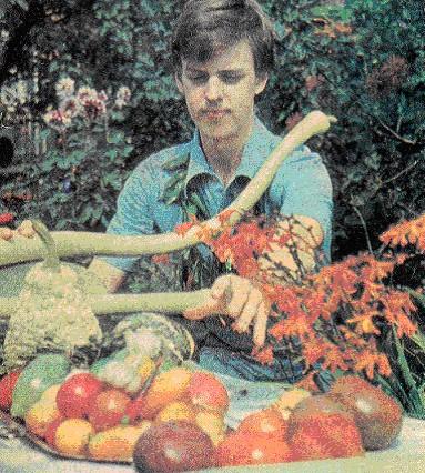 сортовые помидоры фото